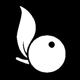 Icône Bcomberry, agence de création de site internet à Montréal