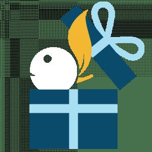Mascotte Bcomberry Cadeau